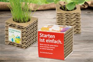 Test de cartón ondulado con plantas